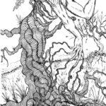 Root Thinker